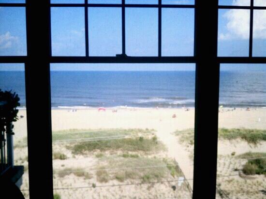 Sandbridge Dunes: Our view for the week.