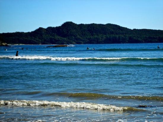 Canadian Princess Lodge: Long Beach surfers