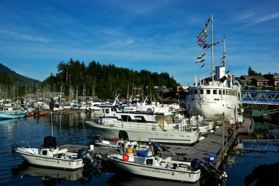 Canadian Princess Fishing Lodge & Marine Adventures: Harbour view from room #305