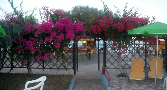 Seaside Apartments: Pool bar area