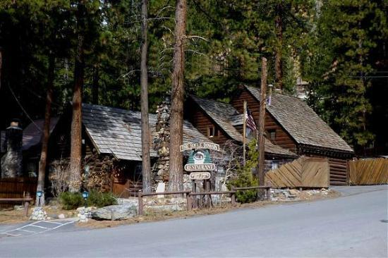 The Soule Domain : Log Cabin