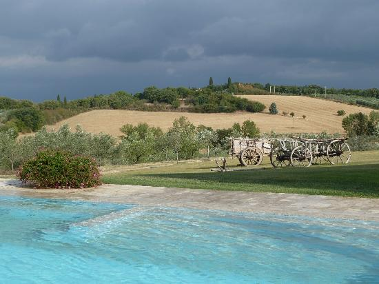 Podere Dionora: Pool and Grounds