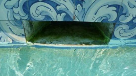 The Annabelle : Cascade pool