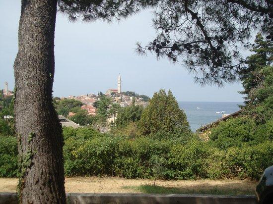 Villa Dobravac: Panorama dall'albergo