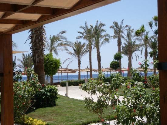 Coral Sea Sensatori - Sharm El Sheikh: lush beach