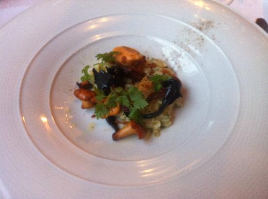 Lucullus: Mussels, forest mushrooms, risoni and panchetta