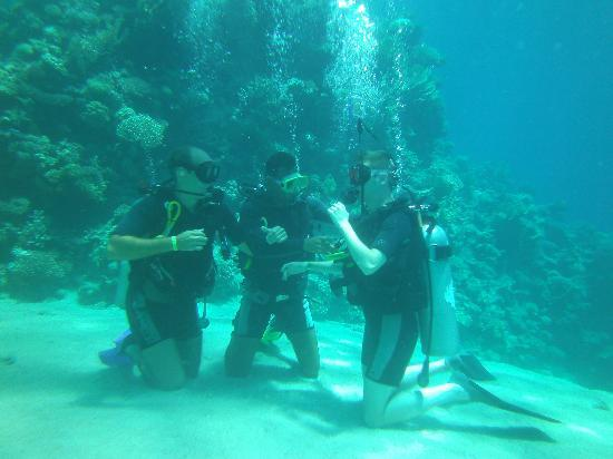 Sharm Day Tours: Diving