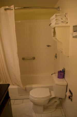 Carmel Village Inn: Banheiro