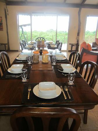 Semilla Verde Boutique Hotel: Beautiful dining room overlooking acreage of coffee beans