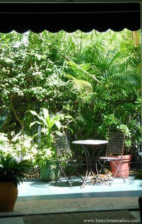 The Barcelona Guesthouse : View of the garden from our lobby area ...