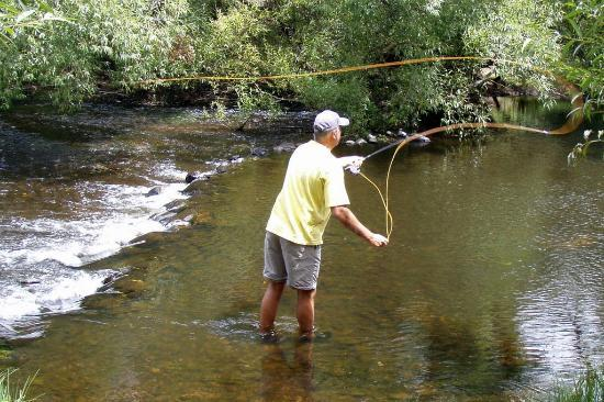 Addlestone House Bed and Breakfast: South Esk River - Fly Fishing