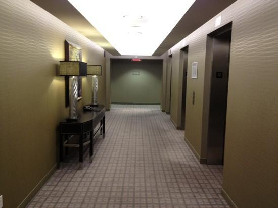 Le Westin Montreal: floor