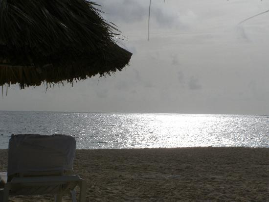 Now Larimar Punta Cana: I could lay here all day . . . actually I did