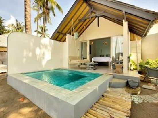 Lilin Lovina Beach Hotel : Personal Plunge Pool -  IN EVERY UNIT!