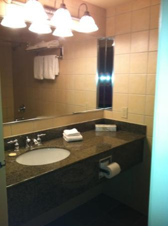 Georgian Bay Hotel & Conference Centre: Renovated washroom.
