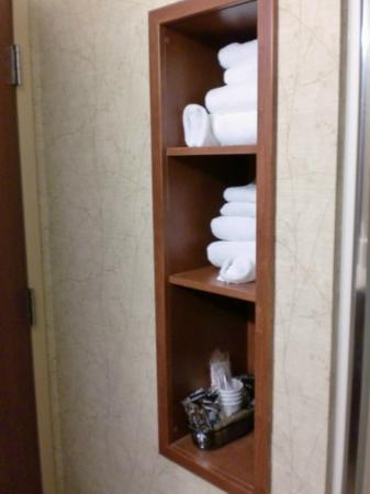 Hilton Garden Inn Meridian: towel storage