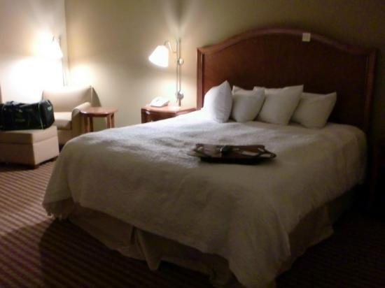 Hilton Garden Inn Meridian: king bed