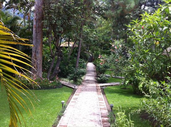 Hotel Regis Panajachel: Walkpath