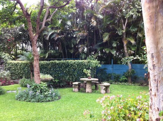 Hotel Regis Panajachel: Grounds