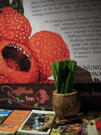 Rafflesia Inn: Info corner