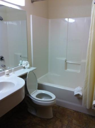 Microtel Inn & Suites by Wyndham Cheyenne: bathroom