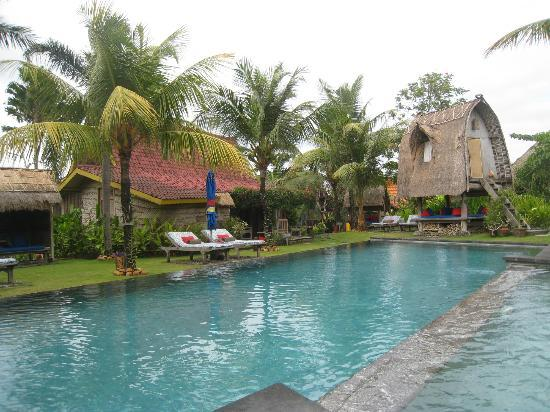 Desa Seni, A Village Resort: Beautiful pool