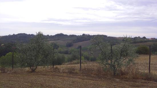 Agriturismo le Docce: View from the pool over area