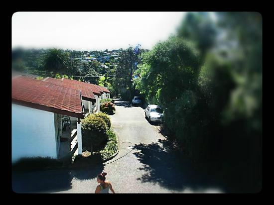 Brown's Bay Olive Tree Motel & Apartment: Villa View 2