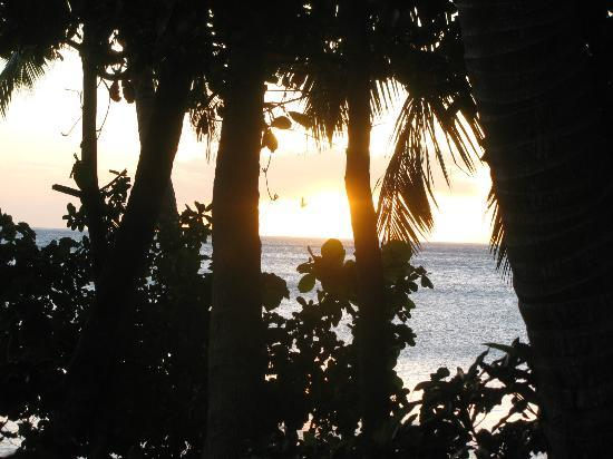 Matana Beach Resort - Dive Kadavu: Sunset from Bure