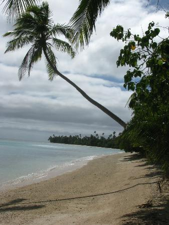 Matana Beach Resort - Dive Kadavu: Long Beach - near resort