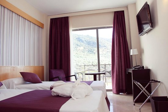 호텔 메니시아 수베티카