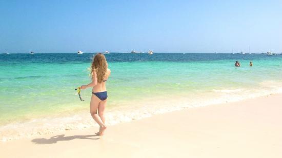 دريمز بالم بيتش بونتا كانا - لاكشري شامل جميع الخدمات: Beach and murmaid 