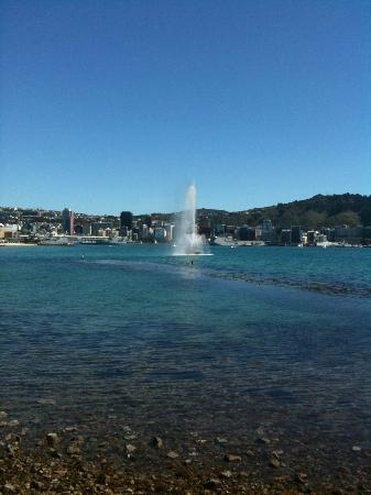 Oriental Bay: The fountain at Oriental Parade