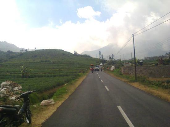 Dieng Volcano: jalan menuju dataran tinggi dieng dari kota wonosobo