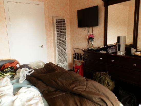 Dolphin Inn: room