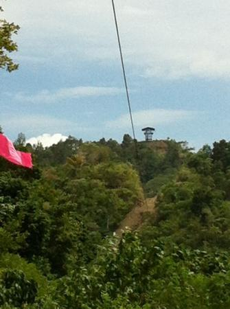 Delta Discovery Park: looking at the 1.3 km long zip line.