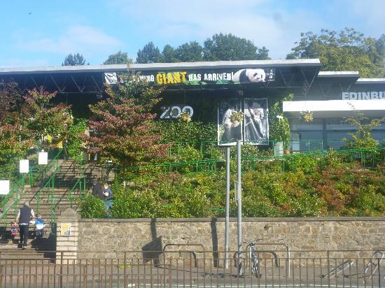 MacIntosh Guest House: Edinburgh Zoo, amazing trip if you're travelling with children