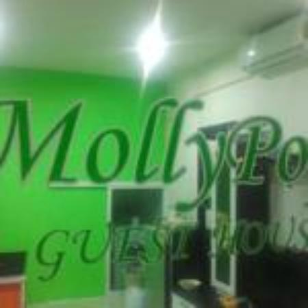 Molly Pop Guest House : MollyPop Guesthouse