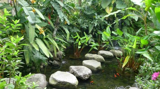 Villa Wastra Fish Pond