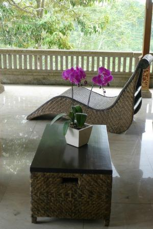 Villa Wastra: Relax!