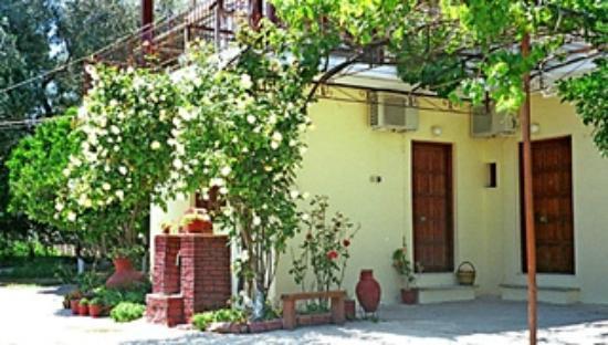 Aris Lazaris Studios: Garden