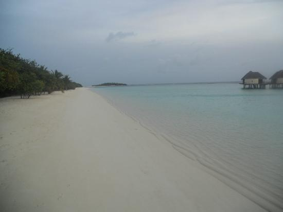 Kanuhura - Maldives: stunning beach! No one around!!