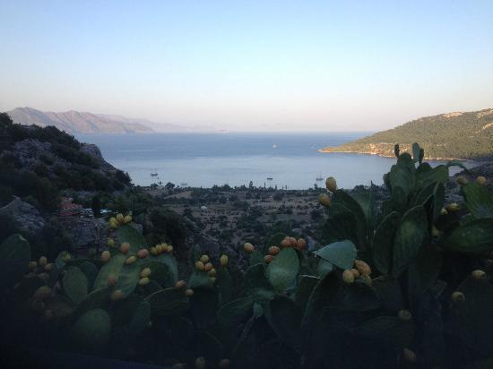 Dionysos Hotel: View out to the coast and the beech club