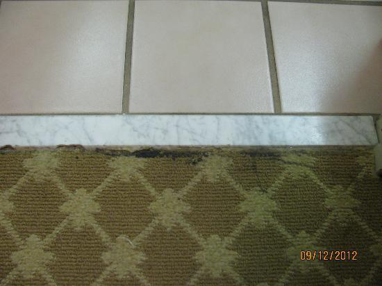 Country Inn & Suites By Carlson, Corbin : Carpet tear at bathroom threshold
