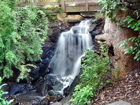 Waterfall Beneath The Bridge Picture Of Hatcher Garden Woodland Preserve Spartanburg