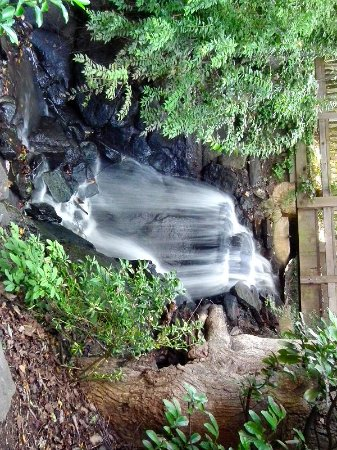 Hatcher Garden & Woodland Preserve : Waterfall beneath the bridge
