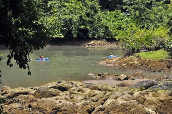 Corcovado National Park: kayakers