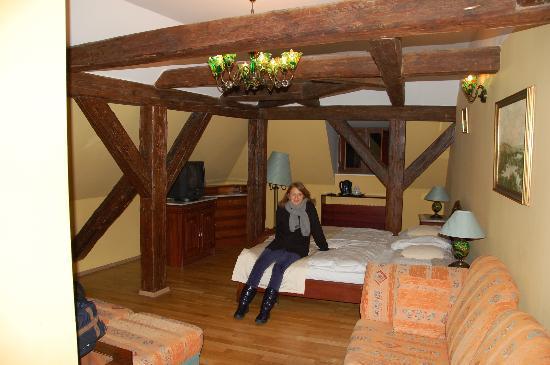 Hotel Metamorphis: la camera