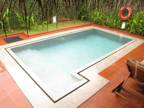 Marari Beach Resort: The private pool
