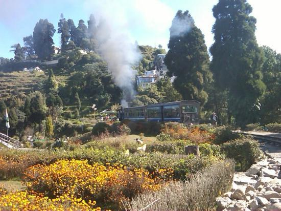 Darjeeling Himalayan Railway: leaving the Smoke Trail behind